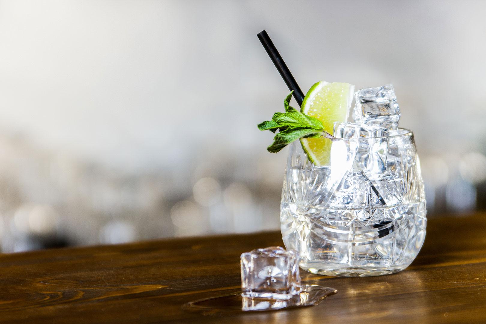 Gin Tonic on Ice