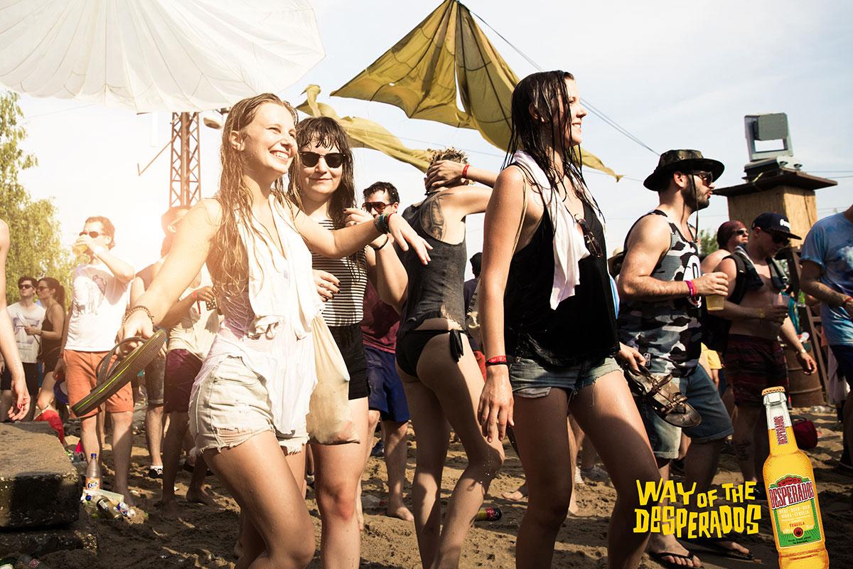 Festival #3