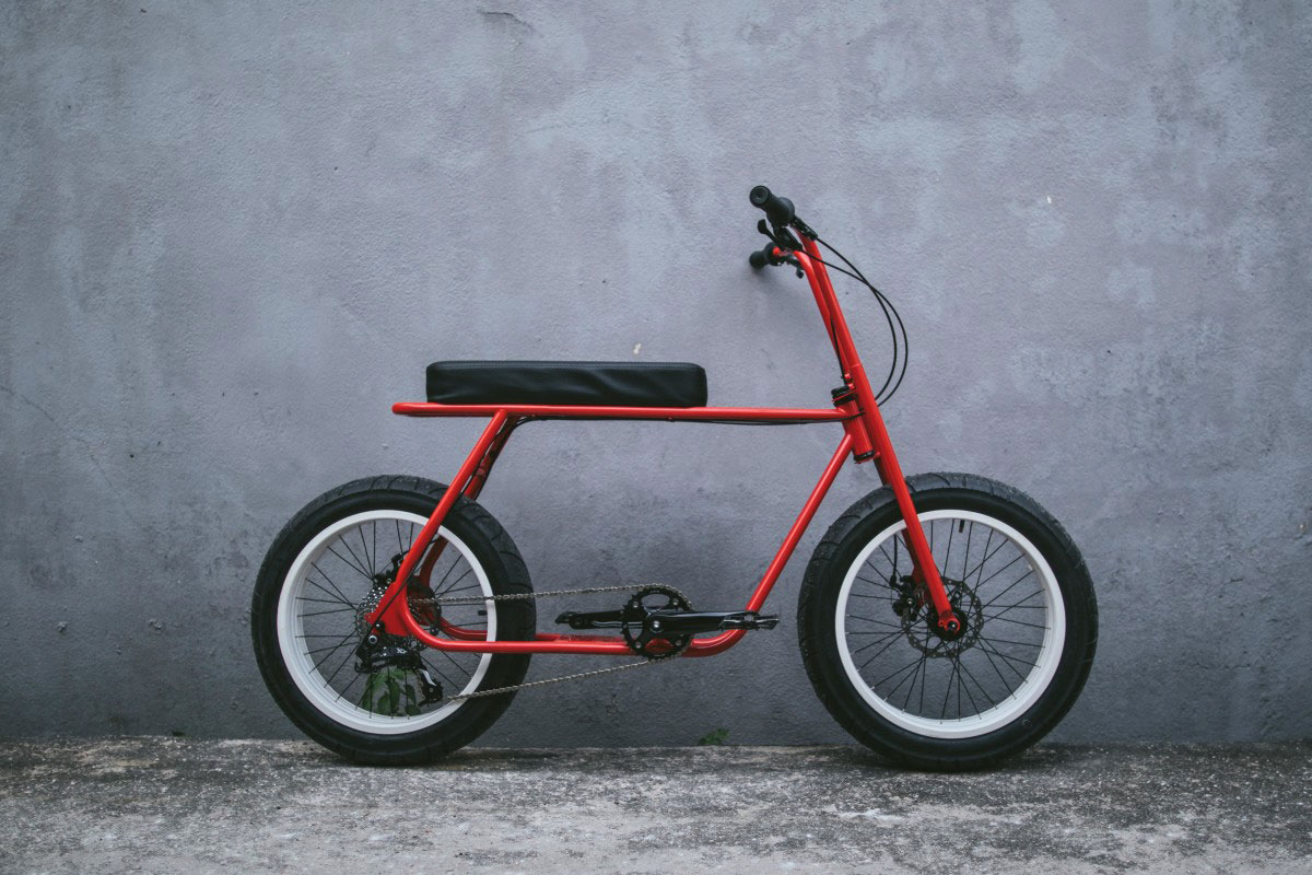 Das Ruckus Bike