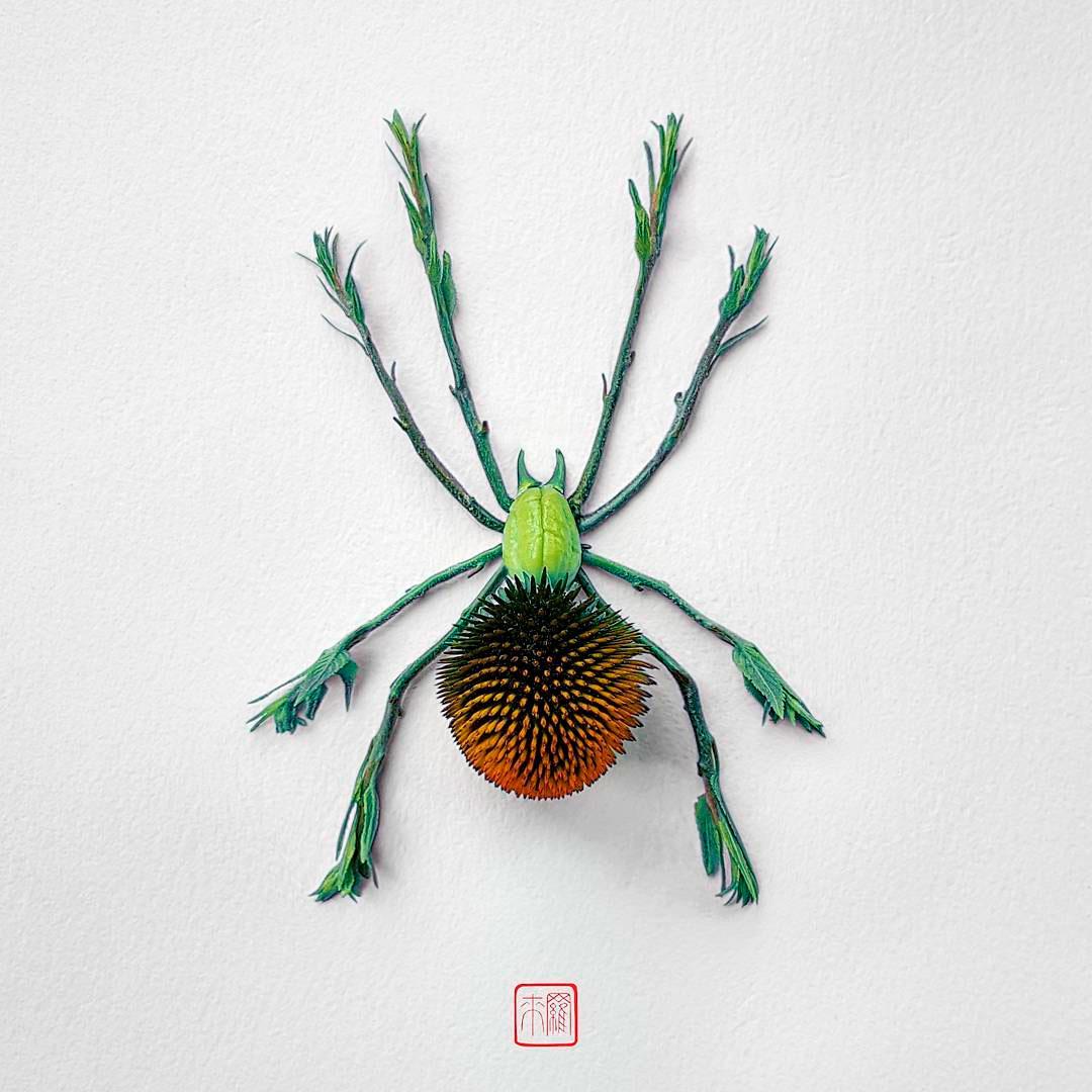 Raku Inoue erschafft Insekten aus Blüten und Pflanzenteilen