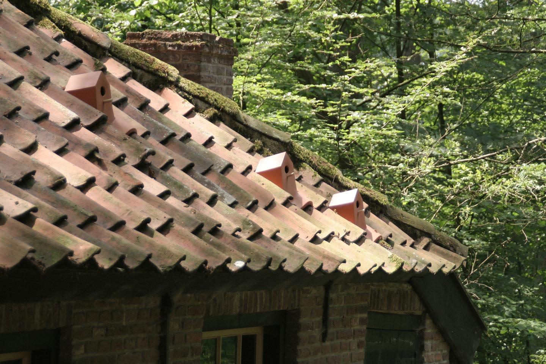 Die Vogelhaus-Dachziegel