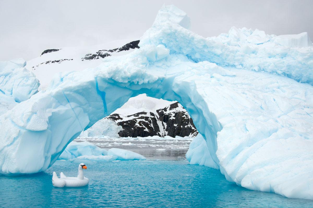 Swan Ice Bridge