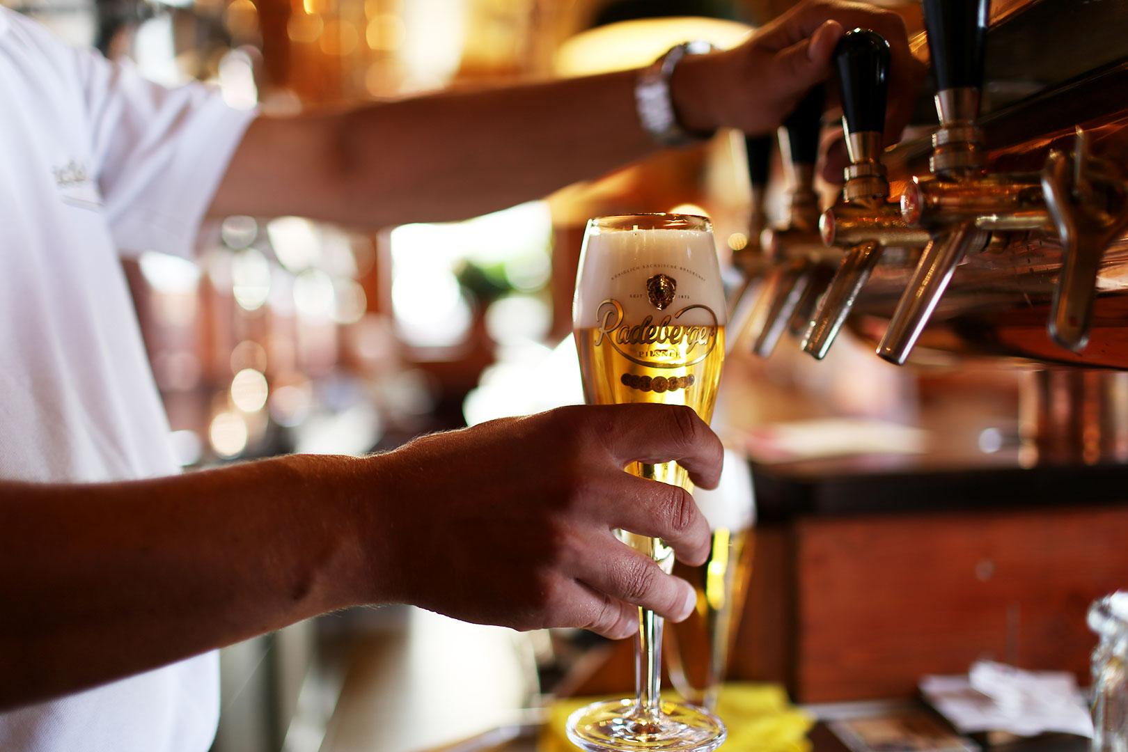 Auf Reifeprüfung mit Radeberger Pilsner – zwischen Brauereiführung und Filmnacht am Elbufer