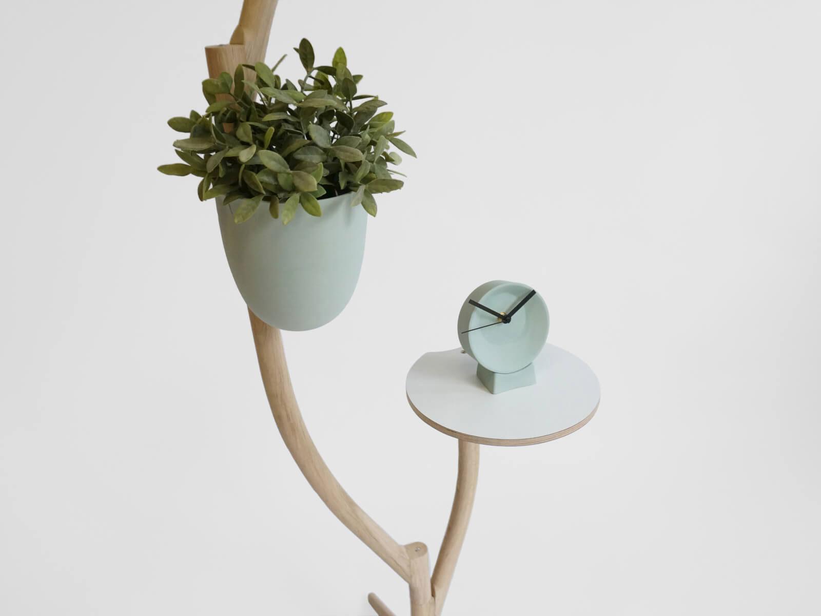 Pflanze Tisch