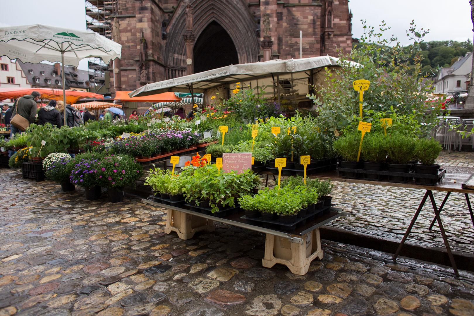 Münstermarkt Markt Freiburg
