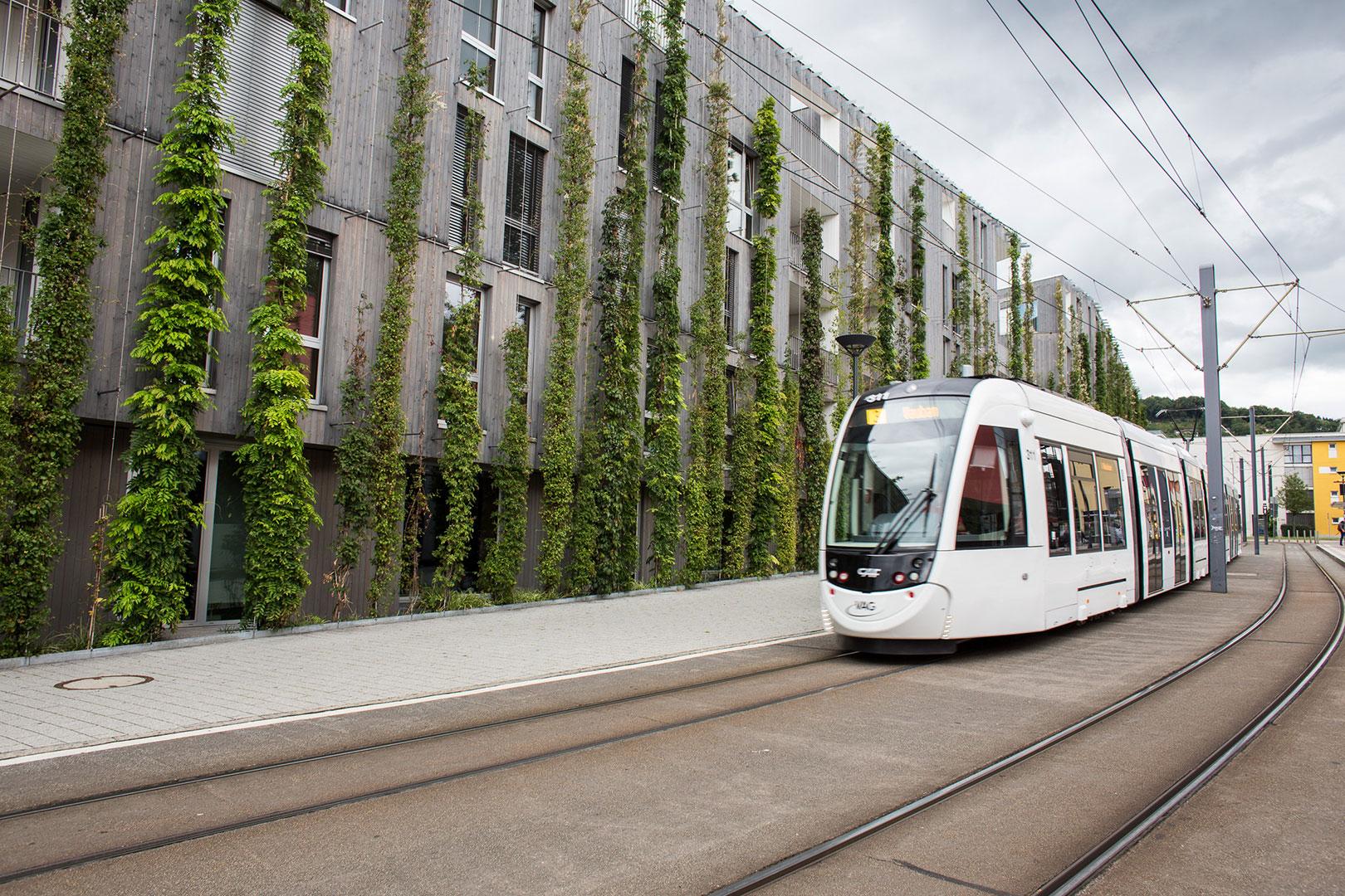 Ein grünes Wochenende in der Futurecity Freiburg