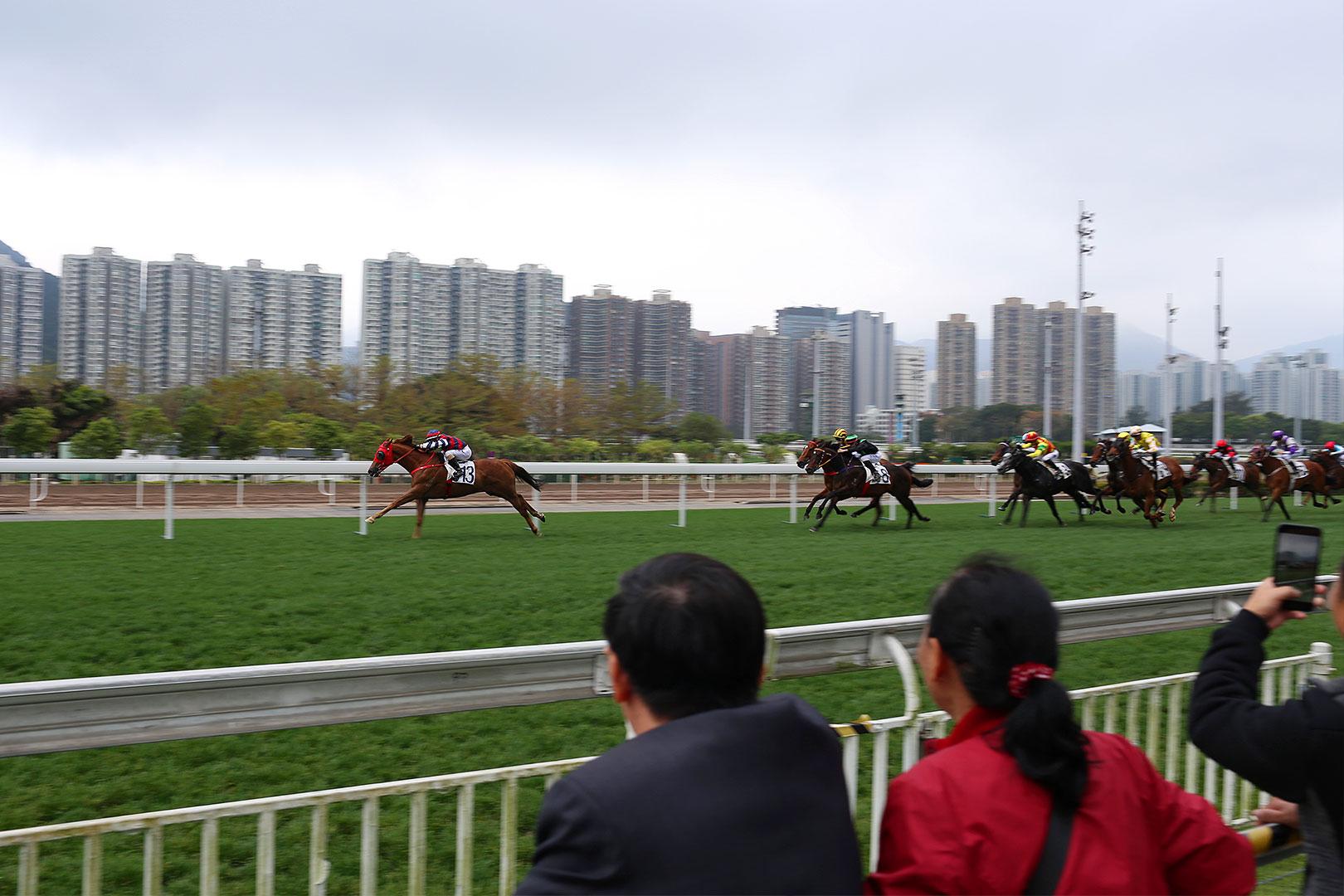 Hongkong Horserace