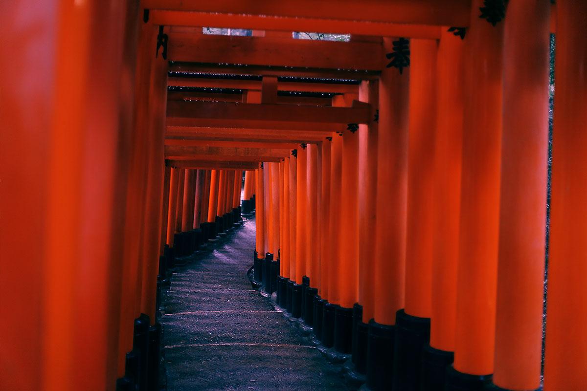 Im Regen durch das traditionelle Kyoto