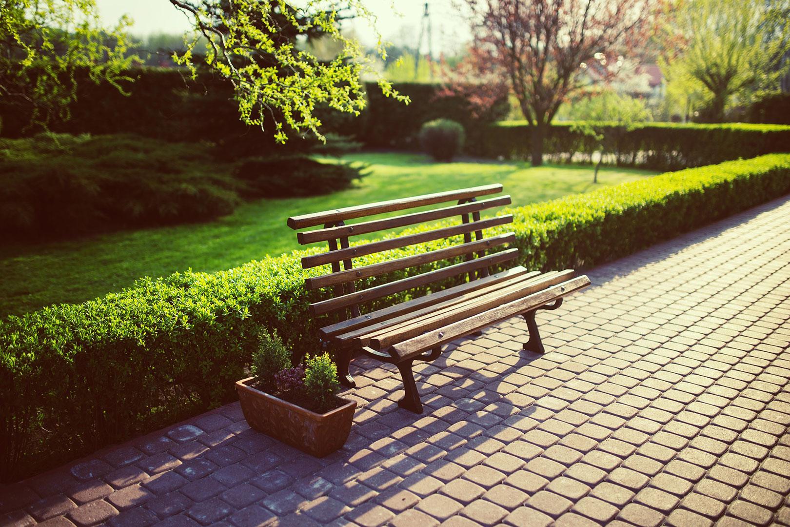 Kreiere deinen eigenen Garten Eden mitten in der City