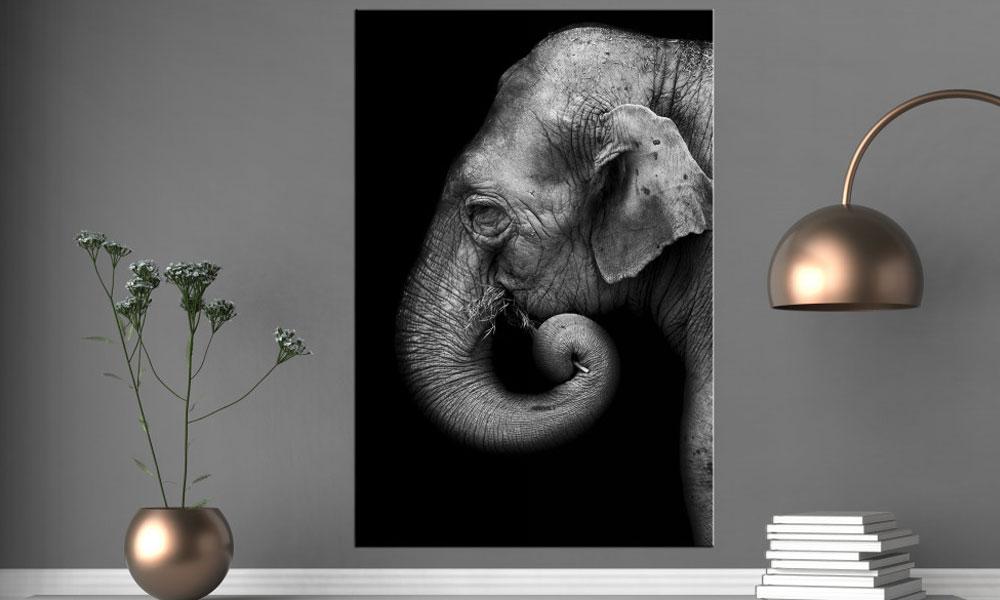 Wanbild Elefant schwarzweiß